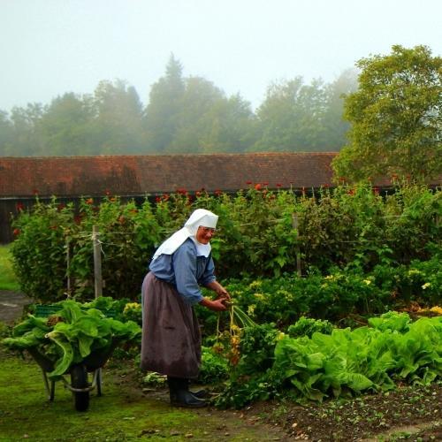 Nonne bei der Gartenarbeit, Abtei Zisterzienserinnen, Frauenthal